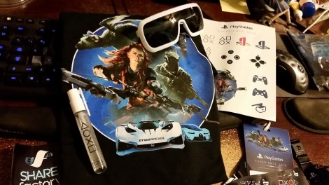 Not shown are the cloth poster, the water bottle, the little PS4 card-holder, and I think one or two small things I'm forgetting.