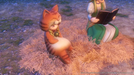 DRAGON QUEST XI_ Echoes of an Elusive Age_20180908155710.jpg